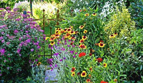 Sommergarten - Foto: thomasfuer, Photocase